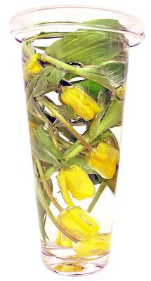 gula tulpaner