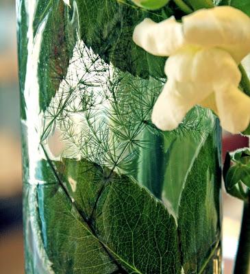 lejongap, laminerade blad