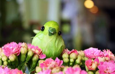 rosa calandiva med grön fågel