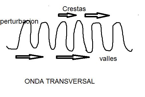 ondas transversal