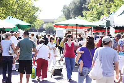 Farmers Market Began Its 2009 Season >> The Larson Lingo Farmers Market