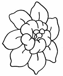 riscos diversos de flores e gramas e outros desenhos e riscos