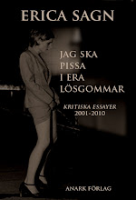 erica sagn: jag ska pissa i era lsgommar. kritiska essayer 2001-1010