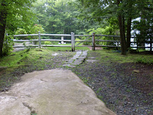 THE PATH TO THE POOL BEFORE THE REDESIGN