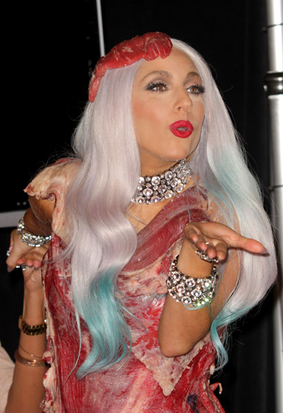 lady gaga meat dress costume. I can smell Lady GaGa#39;s outfit