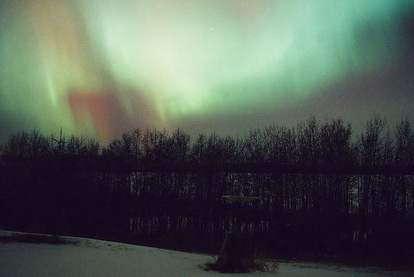 Northern Lights Southern Cross