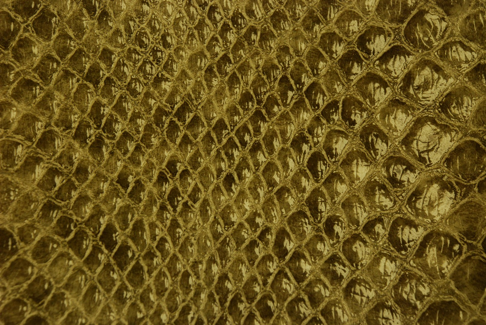 Leather Carpet Texture Leather Texture Download