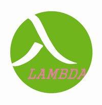 Gruppo Lambda