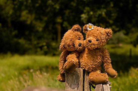 http://2.bp.blogspot.com/_5ZQObO5EZt0/SwKdrgtr_qI/AAAAAAAAAH4/6kw7Lo-Xq-c/s1600/539135-3-bear-couple-in-love.jpg