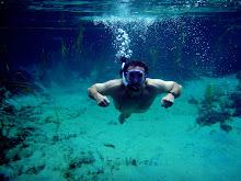 Jim Reel discovers Florida's Springs