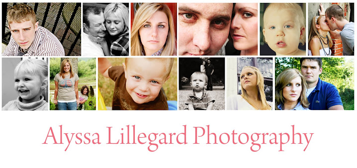 Alyssa Lillegard Photography