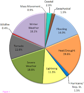 Figure 1: Natural Hazard Deaths by Event Type
