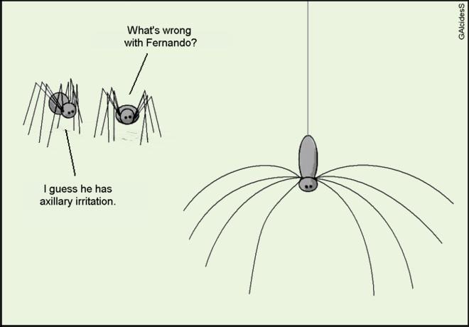 [Uncomfortable+spider+GAlcidesS.JPG]