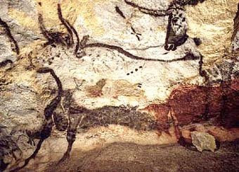 Cave paintings of Aurochs