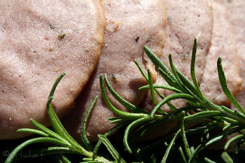 Olive Oil Cookies with Red Wine and Rosemary <i>...farewell food</i>