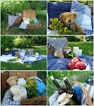 Na pikniku