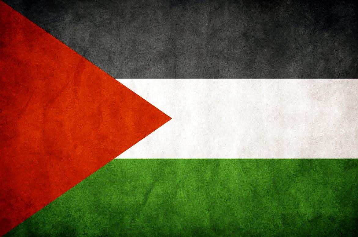http://2.bp.blogspot.com/_5ca5isy7rdo/TTeaRrt-saI/AAAAAAAABWw/dGMtyiSJwjs/s1600/palestine-paper-flag.jpg