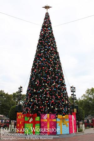 """[Hong Kong Disneyland] """"A Storybook Fantasy""""  HKDL+2010+%25E8%2581%2596%25E8%25AA%2595%25E6%25A8%25B9+A"""