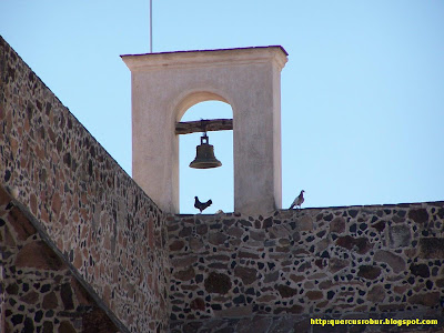 Palomas en la Parroqua de Zacoalco de Torres
