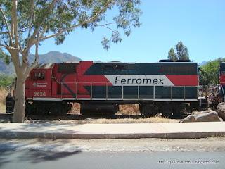 Locomotora Tequila Express