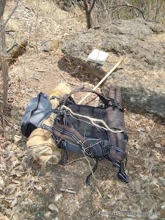 Mi mochila, bastón y el mapa