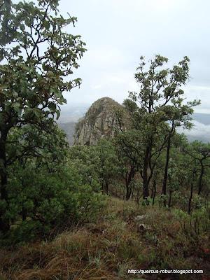 La Tetilla donde se esconde el geocache Paquitos