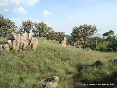 Vista de las rocas mágicas de Tala