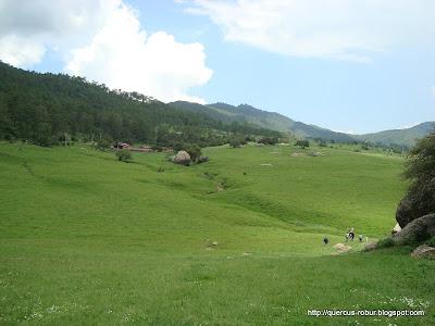 Vista al Norte desde las Piedrotas de Tapalpa