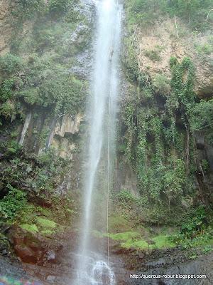 Cascada Los Azules - Tequila (65m)