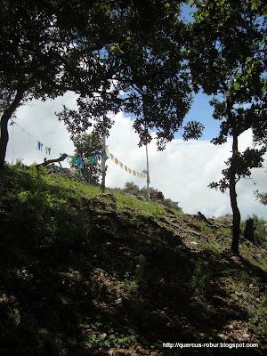 Las Cruces del Cerro Grande de Ameca