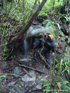 El arroyo el Carrizal sale al rancho el Trapiche