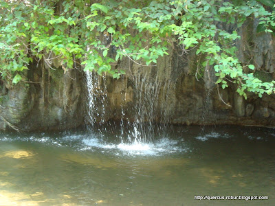 Aguas termales cayendo al río de agua fría - Chiquilistlán