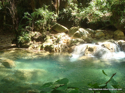 Arroyo agua fría en barranco Chuveje