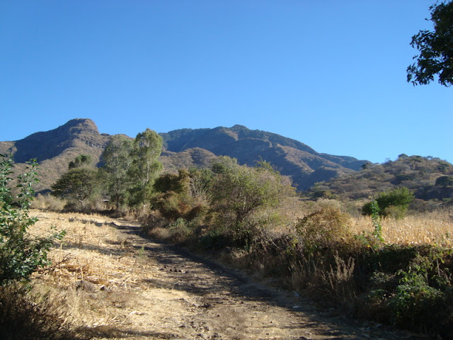 Vista del Cerro Viejo desde brechas de Zapotitán
