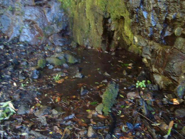 Agua en Cerro Viejo en la cara sur