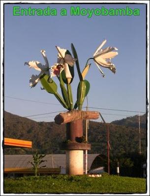 entrada a moyobamba