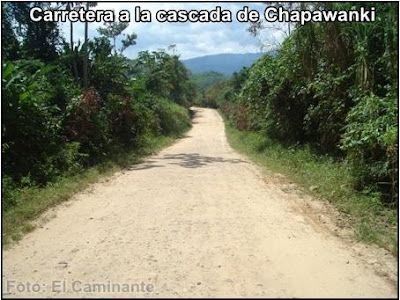 carretera a chapawanki antes de llegar a la bifurcacion (lamas, peru)