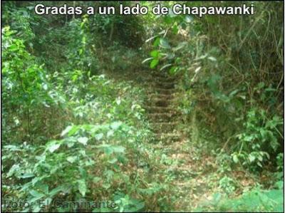 gradas que llevan arriba de la cascada de chapawanki (lamas, peru)