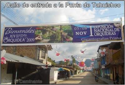 gigantografia del xiv festival de la orquidea 2009, (moyobamba, peru)