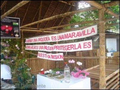 orquideas del inibico en el xiv festival de la orquidea 2009 (moyobamba)