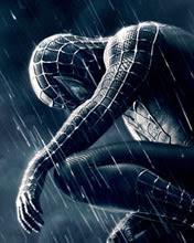 176x220 wallpaper Spider Man 3