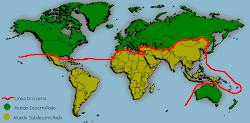 Línea divisoria del mundo desarrollado y el subdesarrollado