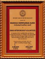 Bayaning Propesyonal Award
