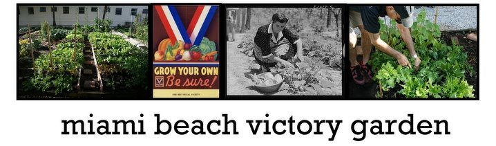 Miami Beach Victory Garden