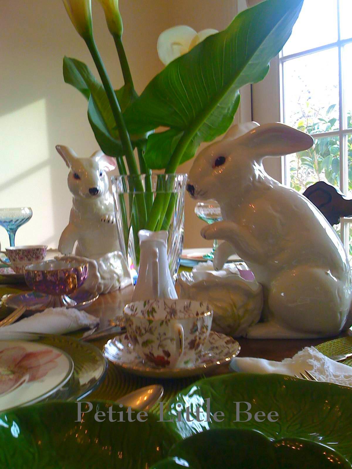 [rabbits+5]