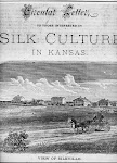 View of SILKVILLE (Franklin County, Kansas, 1877)