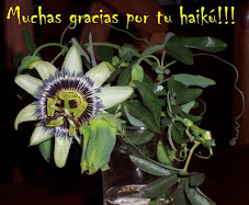 MUCHAS GRACIAS POR TU HAIK!!!