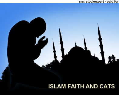 [islam.jpg]