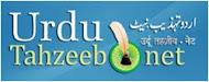urduahzeeb.net