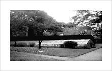 Jardin Botanico 6hs